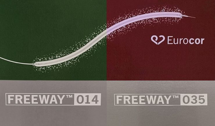 Freeway - ballon actif avec Paclitaxel